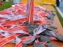 polmaraton-radom-22-czerwca-2014-biegi-dzieci-27