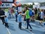 polmaraton-radom-22-czerwca-2014-biegi-dzieci-241