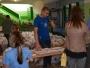 biuro-zawodow-polmaratonu-radomskiego-czerwca-10