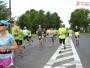 start-3-polmaratonu-radomskiego-czerwca-207